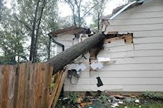 Home Damaged by Fallen Tree